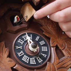 Basic Cuckoo Clock Repair